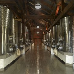 Ground level view of tanks in fermentation barn.