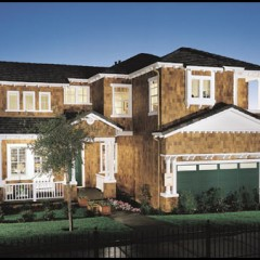 brand new custom house
